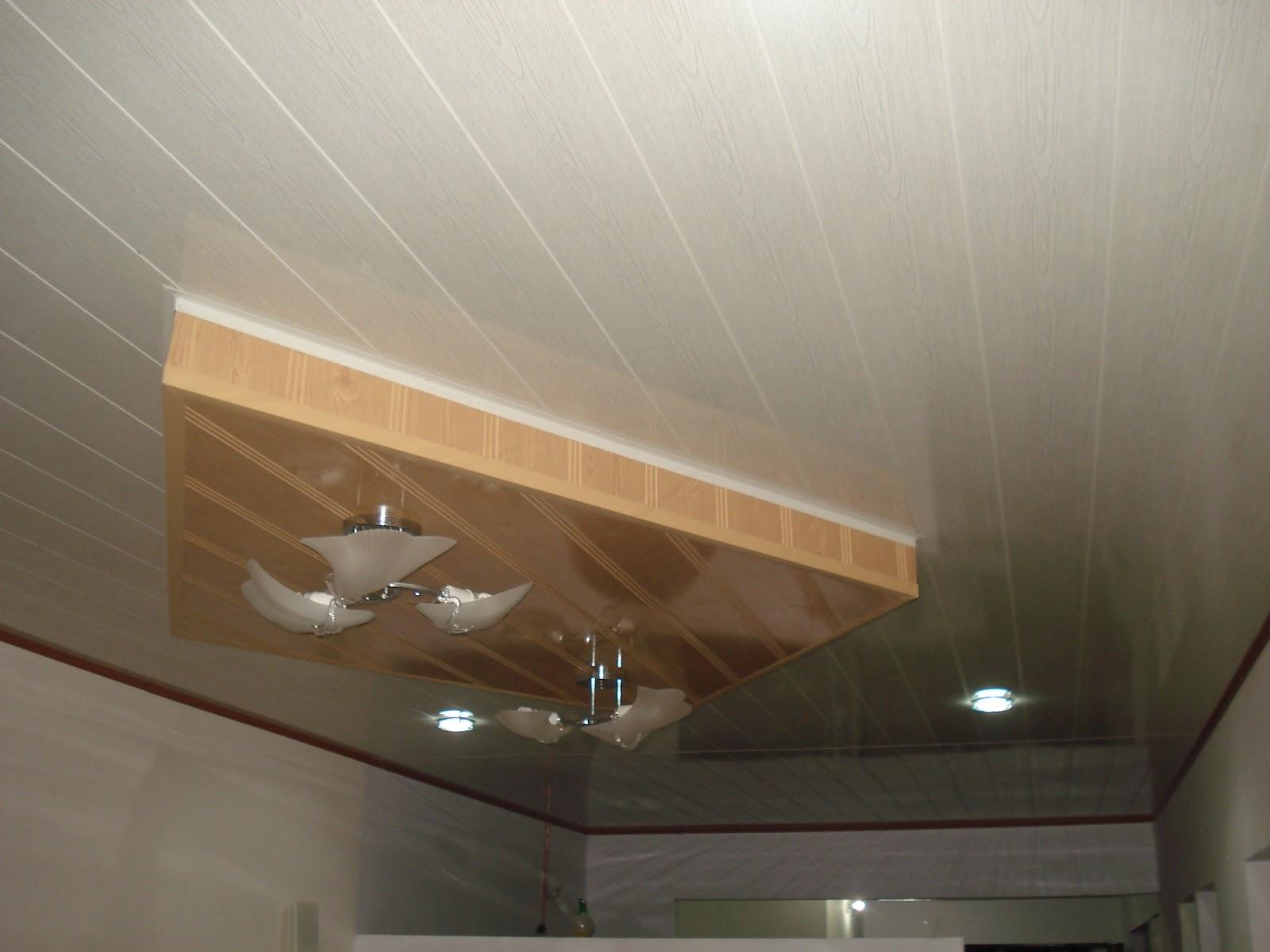 Wilson leon dise os arquitectonicos para sus espacios for Techos de drywall para cocinas