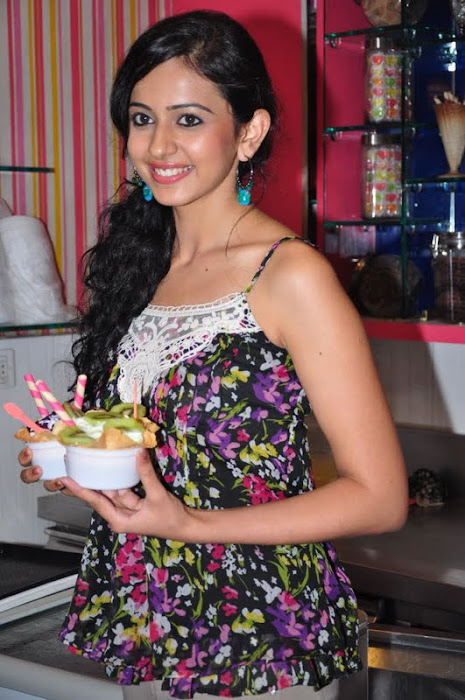 rakul preet singh new @ cream stone ice cream shop photo gallery