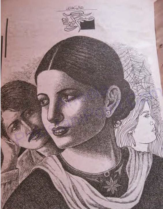 Free download Sanam gazida novel by Aliya Bukhari pdf, Online reading.