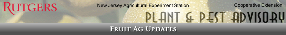 Fruit Ag Updates