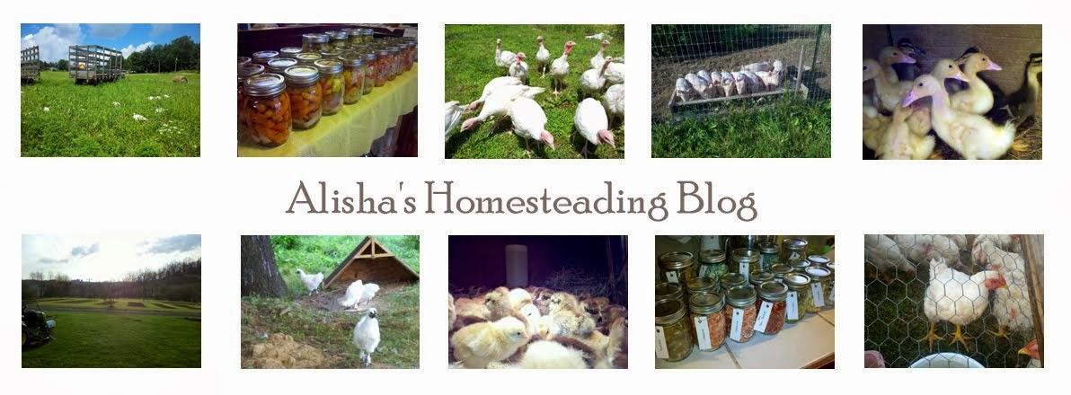 Alisha's Homesteading Blog
