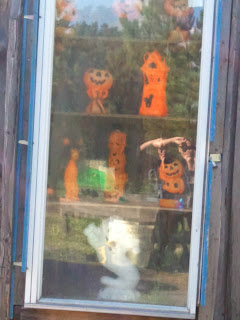 Cannamore Apple Orchard Spooky Window