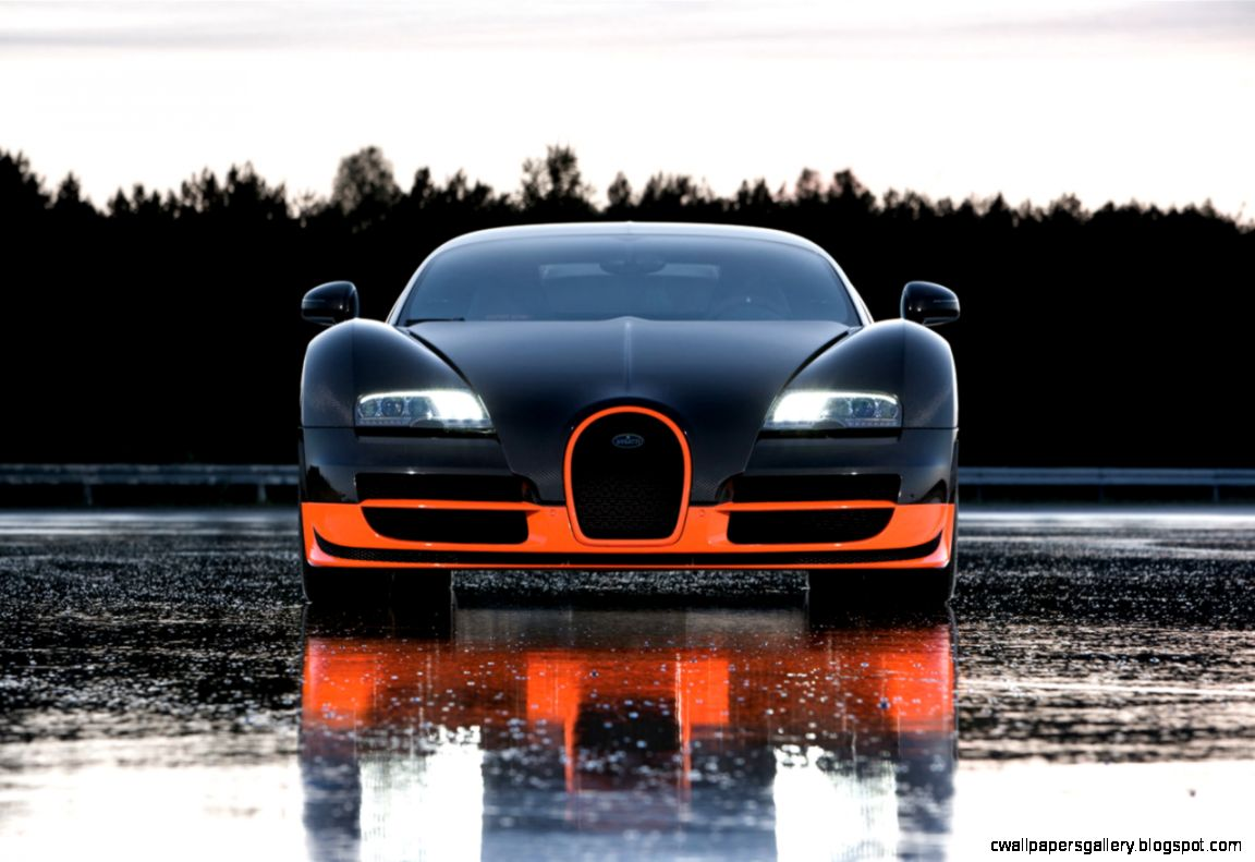 Most Exotic Cars  Car Makers in the World Top 10 Hot Cars List