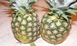 ananas, ananasul, fruct ananas, fructul ananas, ananas comosus, ananas copt, ananas bun, retete cu ananas, preparate din ananas, prorietatile ananasului,