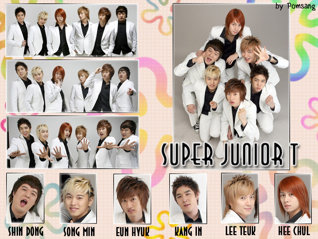 Super Junior Sub Grupos