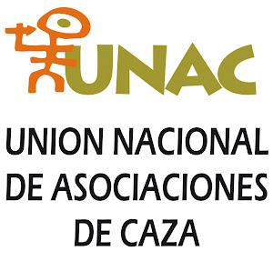 Web de UNAC