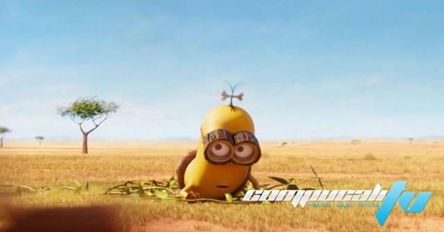 Minions Mini Movies HD 1080p Latino