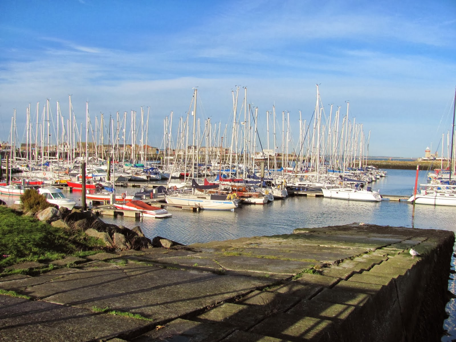Sailboats in Howth Harbor Co. Dublin