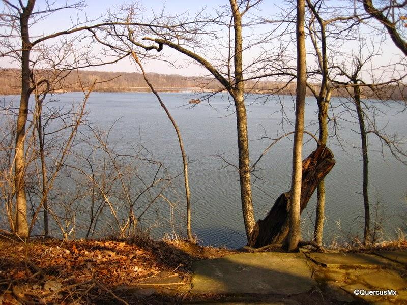 Eagle Creek view