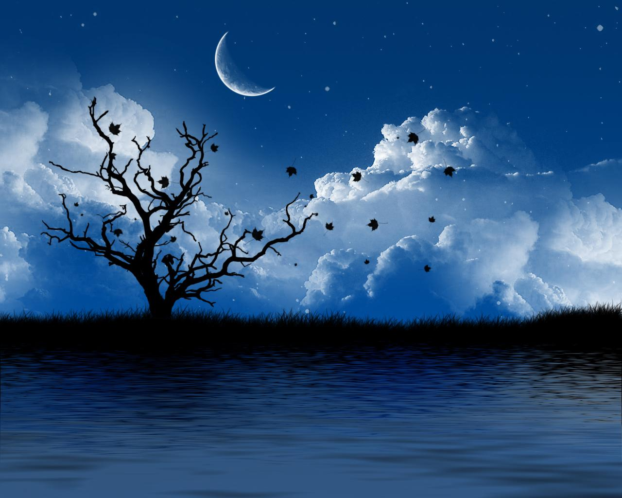 http://3.bp.blogspot.com/-9zWIcwqe44o/TVutFIn-FPI/AAAAAAAAAg4/Znb0phltjDc/s1600/wallpaper-tree-pictures-romantic-artistic-night.jpg