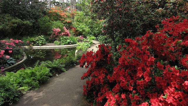 Éclectique Le Parc Floral du bois de Vincennes ~ Parc Floral Bois De Vincennes