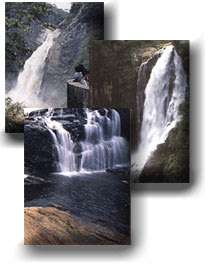 bambarakanda water fall