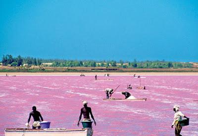 danau yang airnya berwarna pink