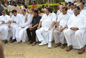 Akkineni Nageswara Rao Cremation Photos Gallery-thumbnail-19