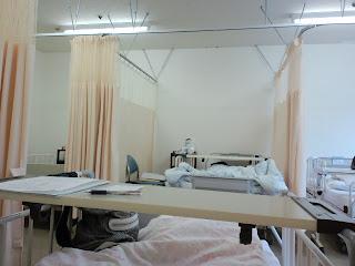 写真:最初に案内された3列並びの真ん中にあるベッドからの眺め。向かい側にも同じように3列でベッドが並んでいる。