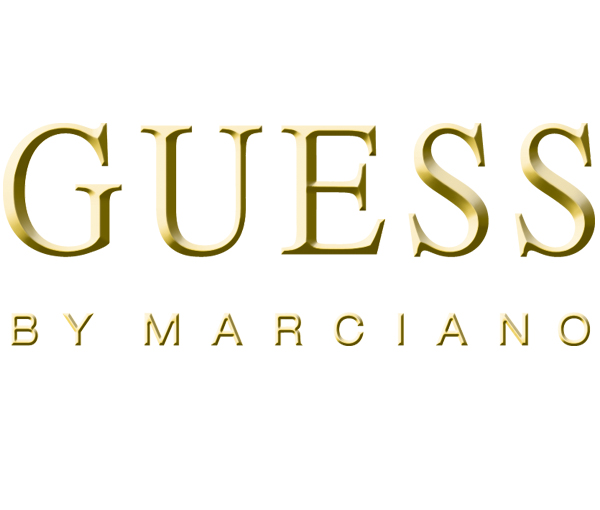 guess history and definition of guess the logo guess