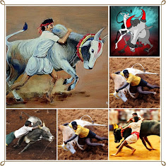 TN Govt Ordinance on Jallikattu