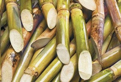Beneficios para la salud asombrosos de jugo de caña de azúcar