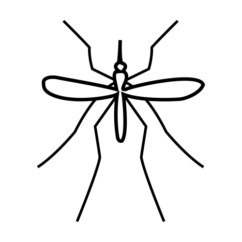 Dibujos Para Colorear De Mosquito