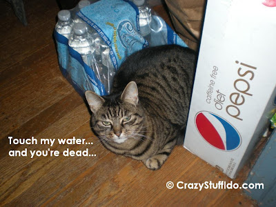 Athena the b*tch cat guarding her favorite spot...  on or in a case of water...  really!