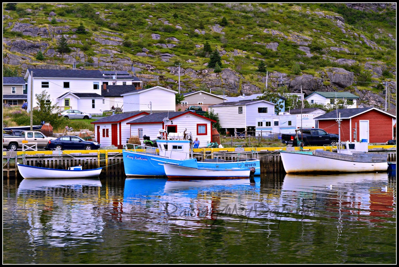 boats in Petty Harbour, NL