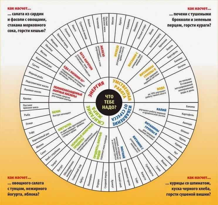 Правильный рацион питания в виде круга