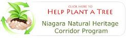 Ajuda com um simples clic grátis / Free click to donate