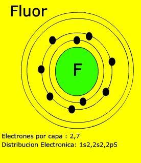 4 diver el fluor f el fluor f urtaz Gallery