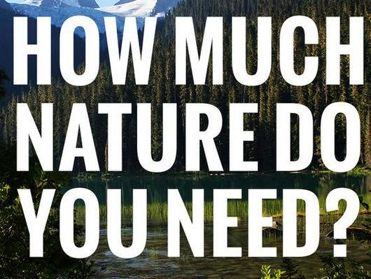 Minutes For Days David Suzuki
