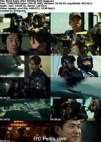 Black Eagle (2012) DVDRip XviD - JUGGS