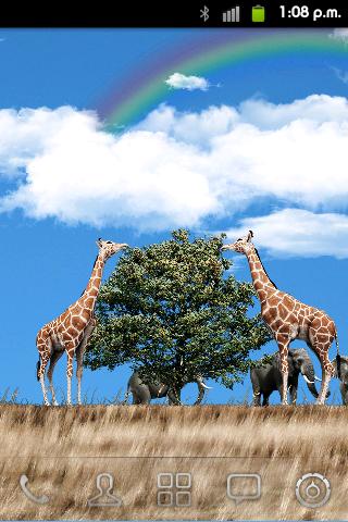 Safari Free