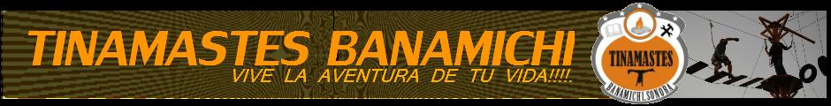 Tinamastes Banamichi