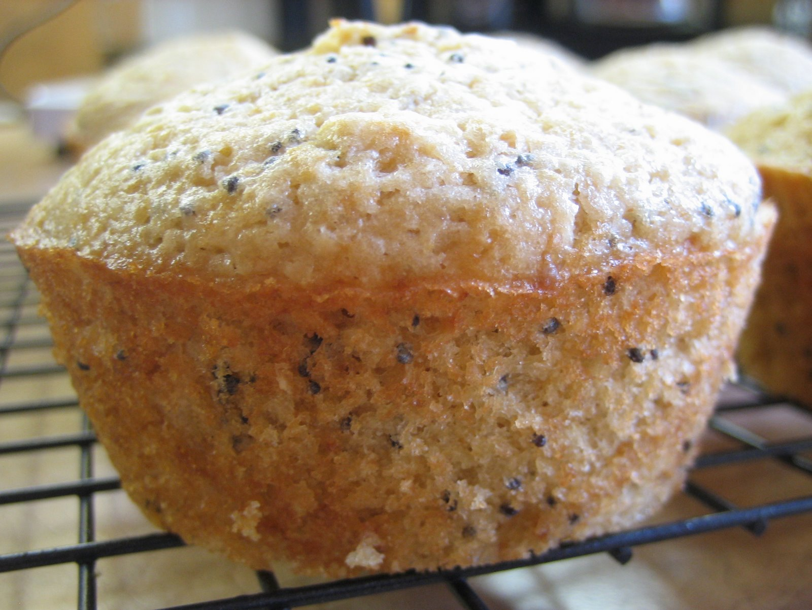 Happy in Dole Valley: Muffin Monday - Lemon Poppy Seed Muffins