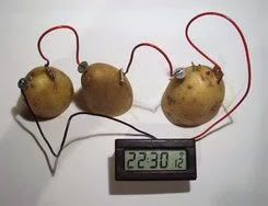 potato battery gathering and recording of data Potato battery science project: investigate how to make batteries out of potatoes using zinc and copper electrodes, connect them in series and in parallel, and use them to power a buzzer and led.