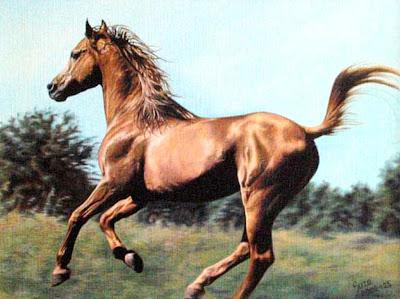 pinturas-modernas-de-caballos-al-oleo