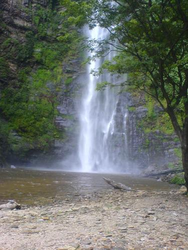Welcome to Fredy's Page: Wli Water fall in Ghana.