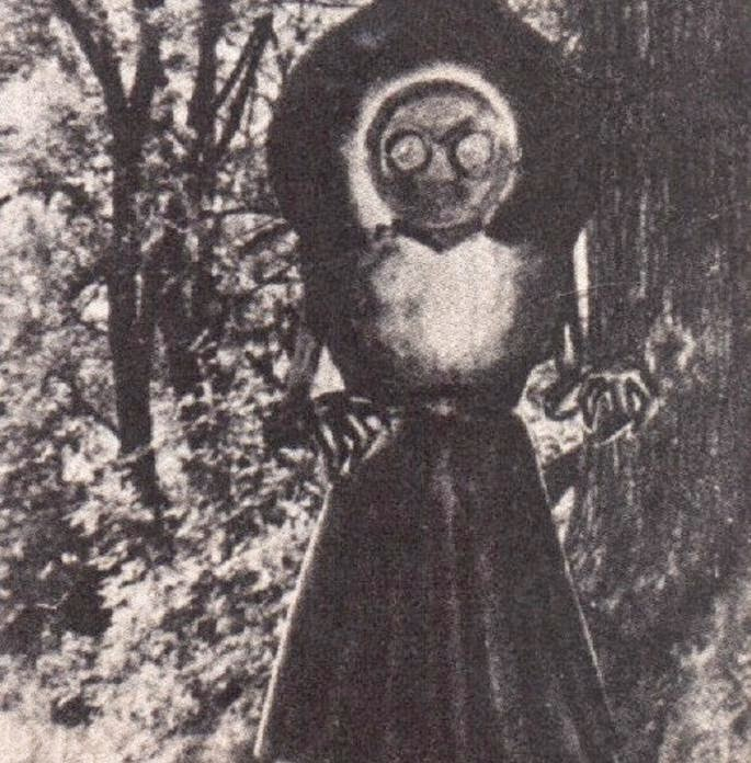 I'd Rather Run Into Bigfoot Than The Flatwoods Monster