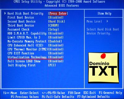 DominioTXT - Tecnologia de Virtualização