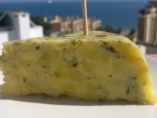 horno-solar-racion-tortilla