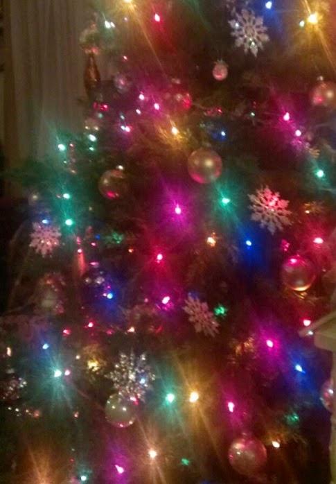 christmas tree 2014 2