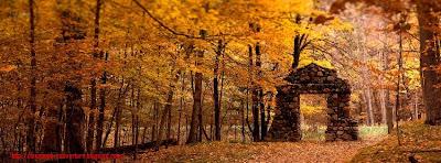 Couverture facebook feuilles d'automne 1