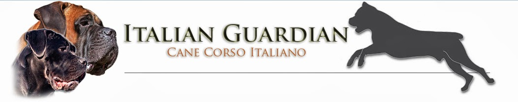 Italian Guardian