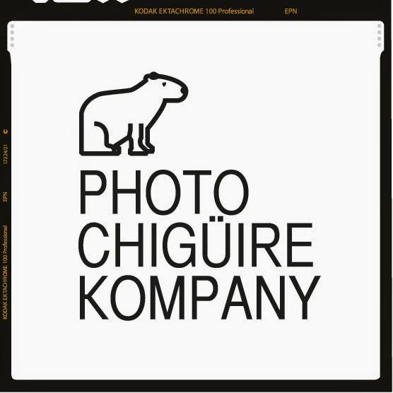 Photochiguire