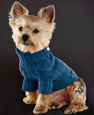 jersey para perro Ralph Lauren
