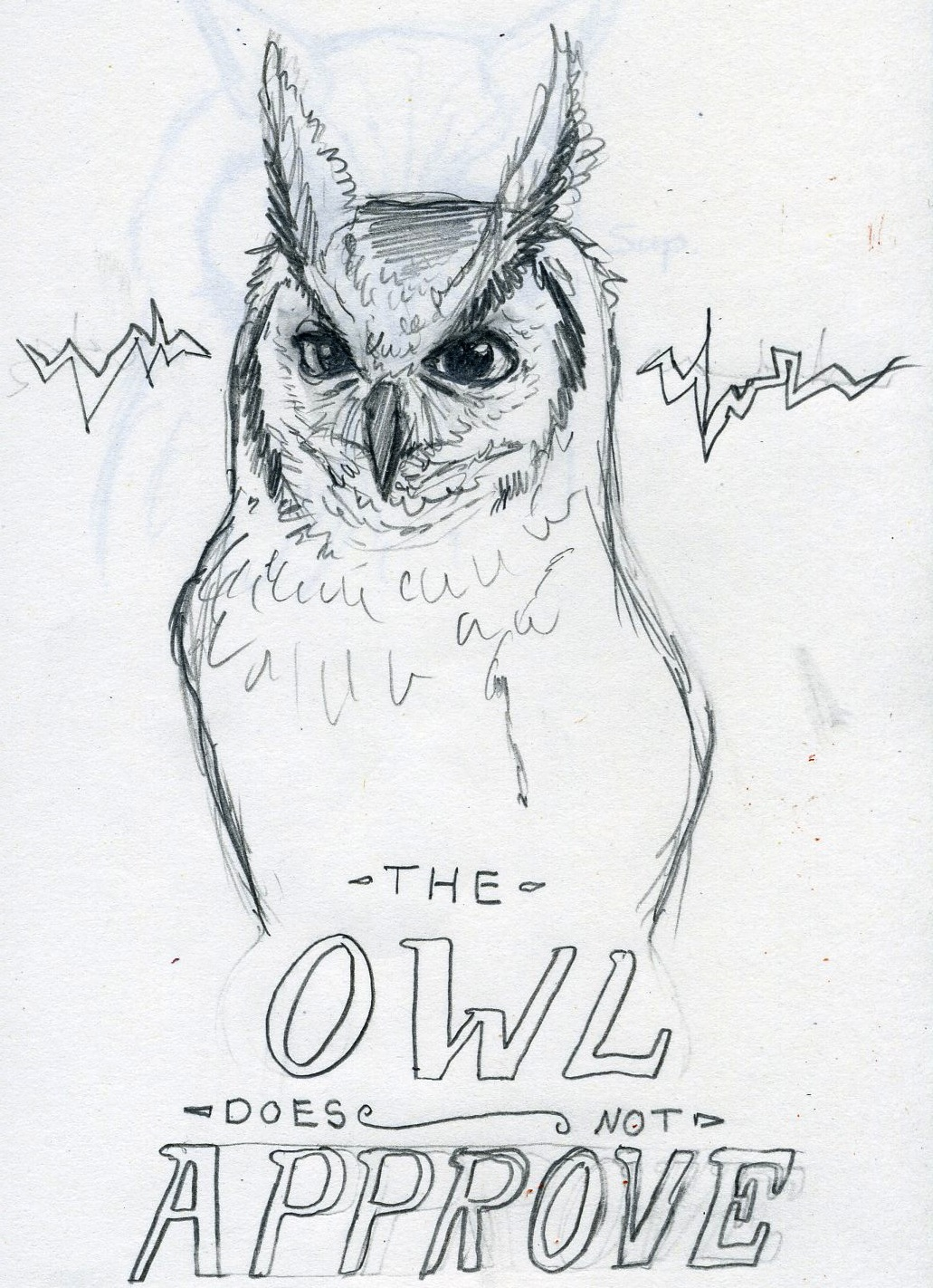 Flom Drawn One Cat Two Owls