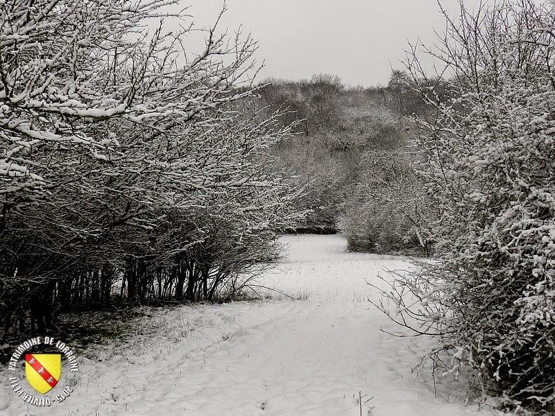 LUDRES (54) - Un village sous la neige !