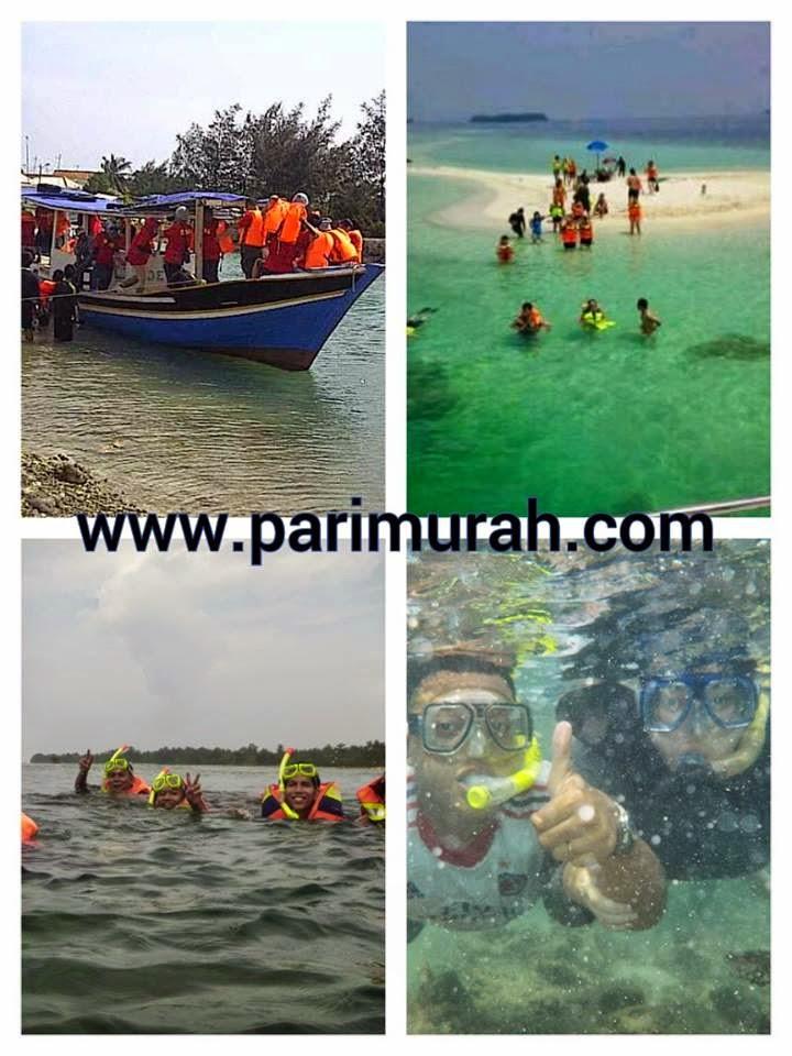 Snorkeling Time di Pari