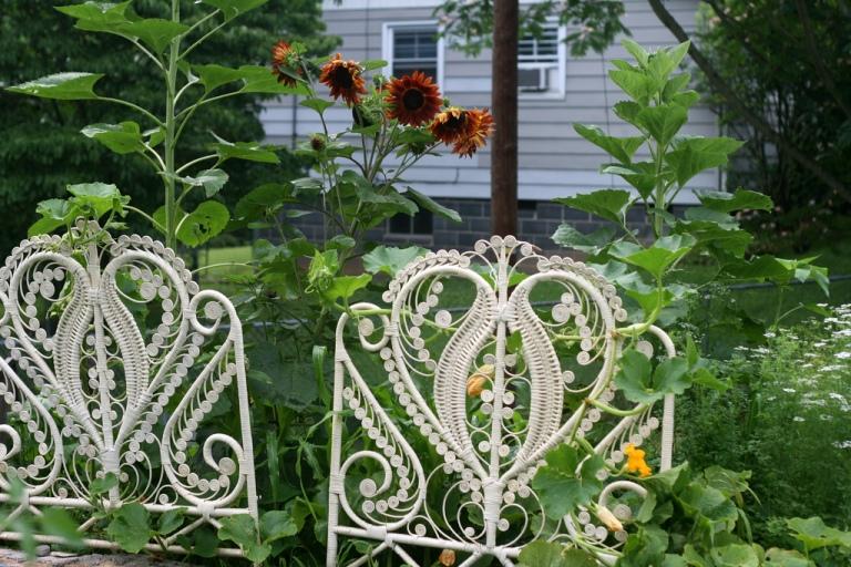 Ewa in the Garden 12 ideas for garden arch trellis hand