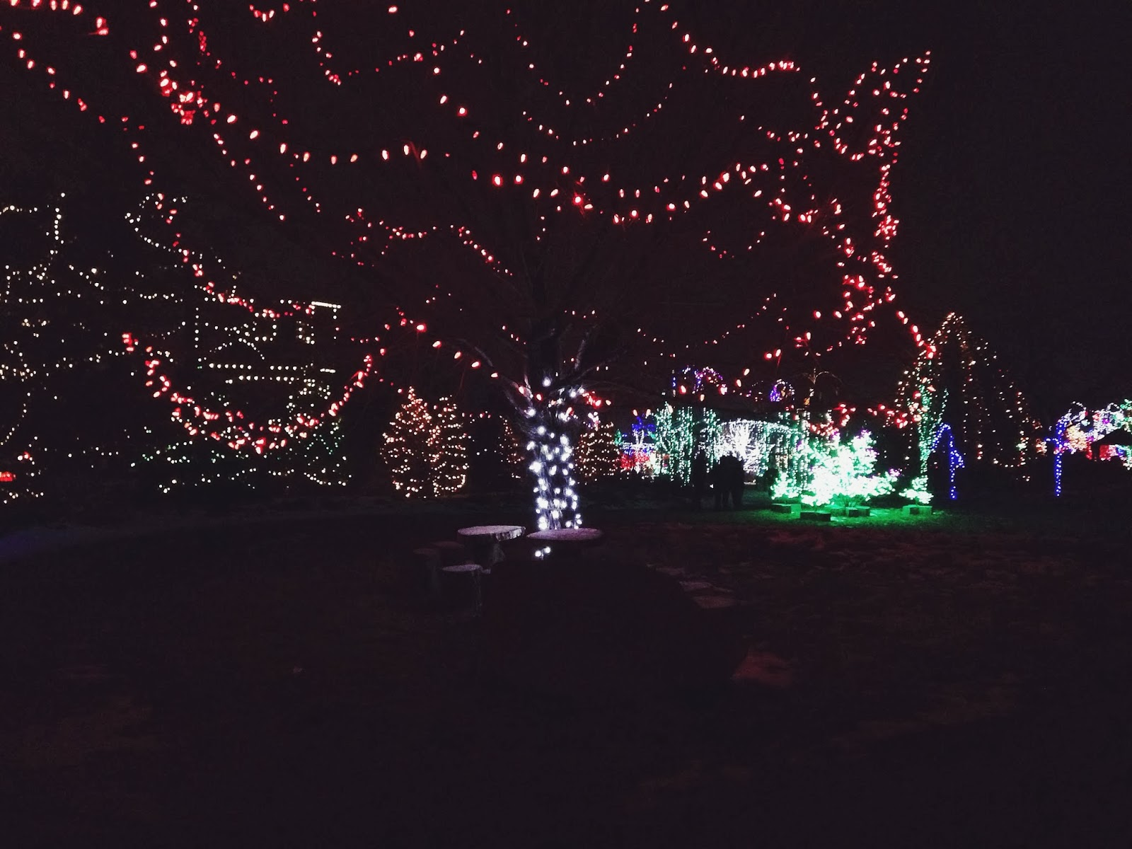 oh whimsical me winter garden aglow