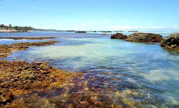 Praia de Garça Torta - Maceió